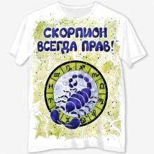 Skorpion vsegda prav montazhnaya oblast 1 02