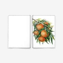 Orange italy