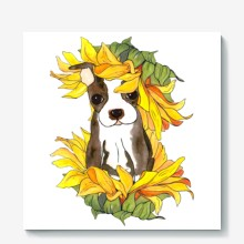 Sunflower puppy