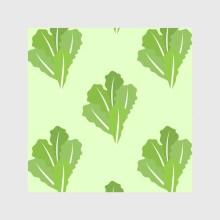 Salat0120