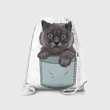 Cat in your pocket