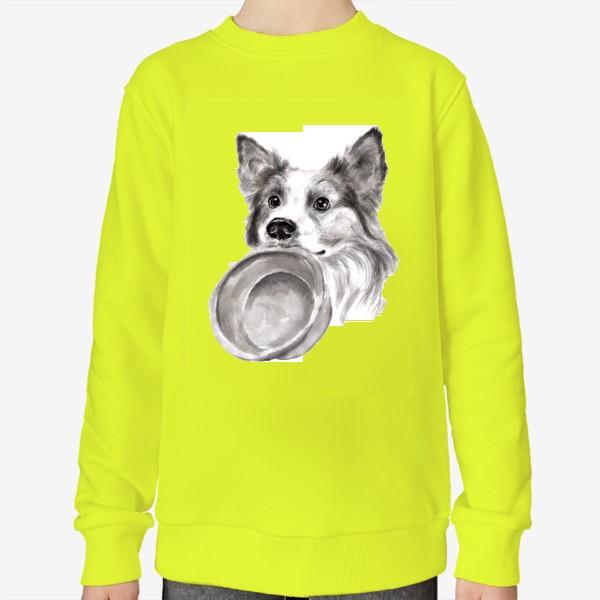Свитшот «Портрет собака колли с миской»