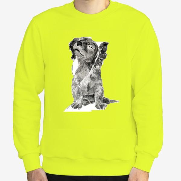 Свитшот «Собака щенок спаниель в наушниках»