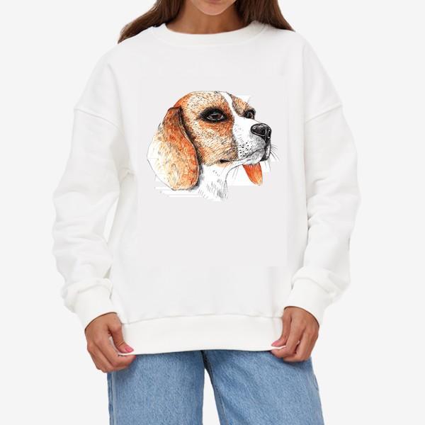 Свитшот «Собака Бигль Рисунок»