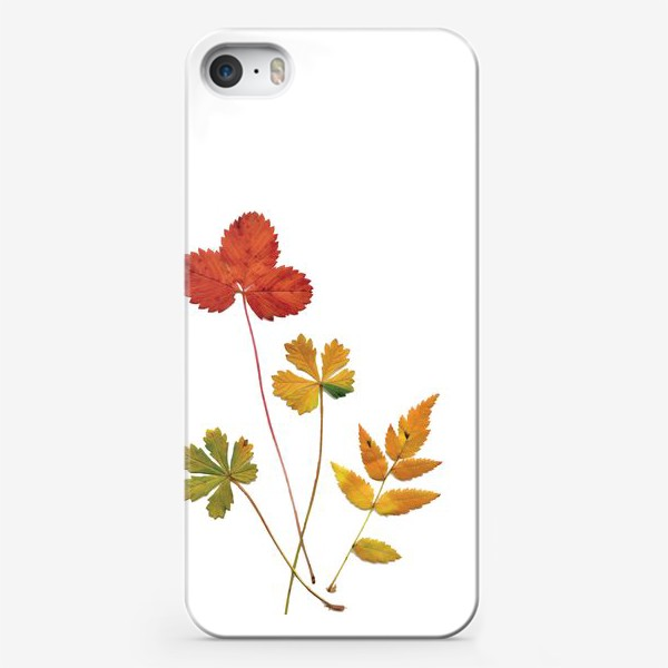 Чехол iPhone «Осенние листья. Autumn leaves.»