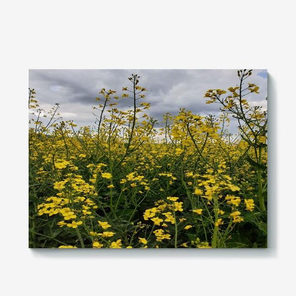 Холст «Cloudy Meadow»