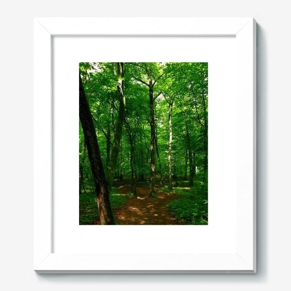 Картина «Hidden Forest»