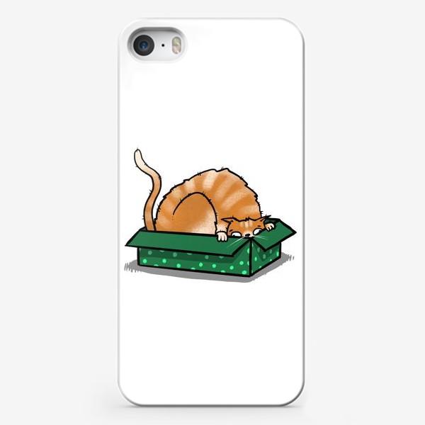 Чехол iPhone «Рыжий кот в коробке »