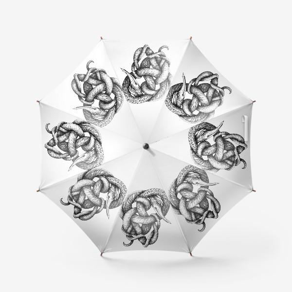 Зонт «Заплетун обыкновенный»