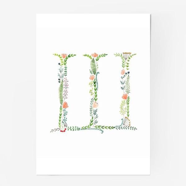 Постер «Буква Ш из веточек, листиков, цветов и ягод.»