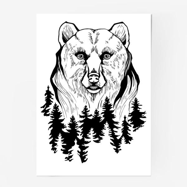 Постер «Медведь и лес»