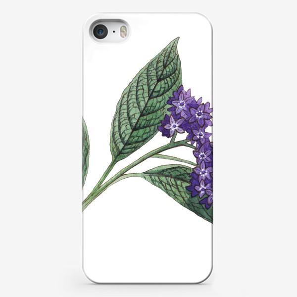 Чехол iPhone «Ботаника. Веточка гелиотропа»