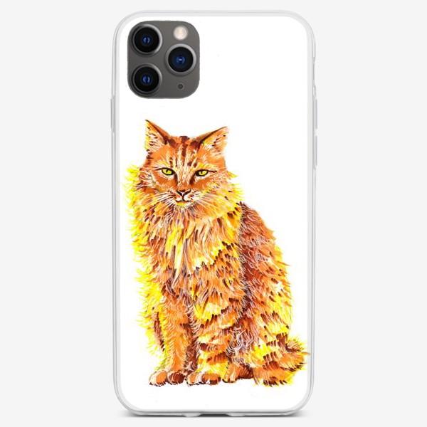 Чехол iPhone «Пушистый рыжий кот»