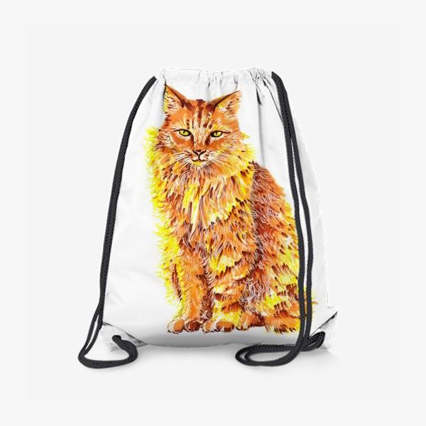Рюкзак «Пушистый рыжий кот»