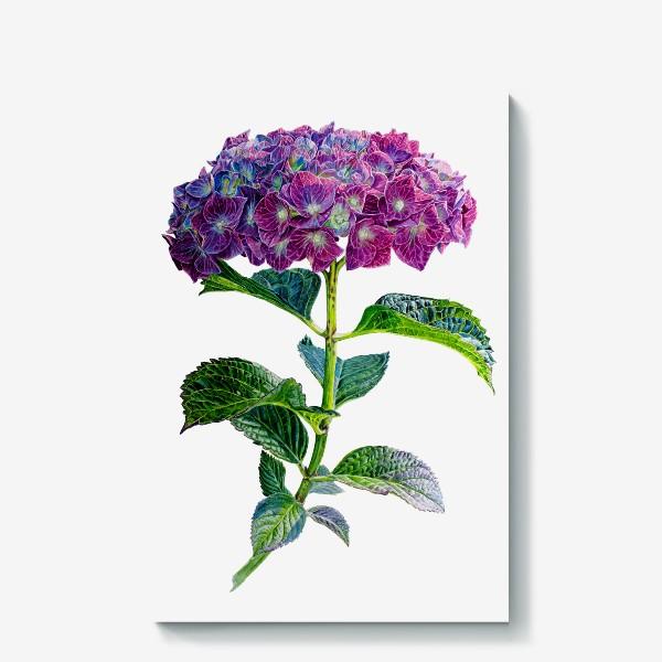 Холст «Цветок Гортензия акварель»