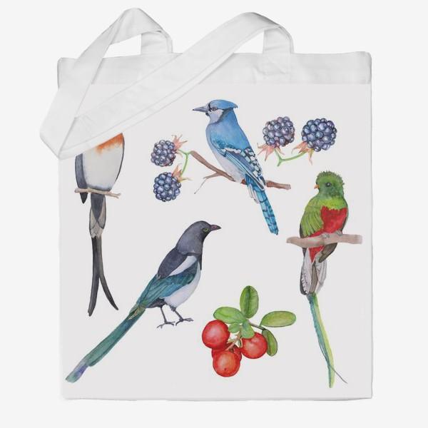 Сумка хб «Watercolor drawing of a bird set»