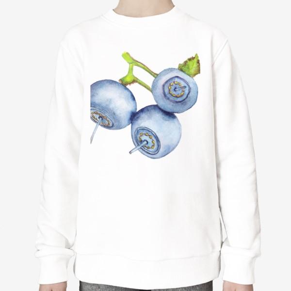 Свитшот «Blueberries on white background»