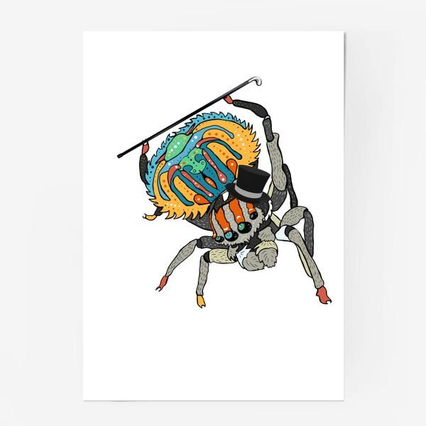 Постер «Паук»