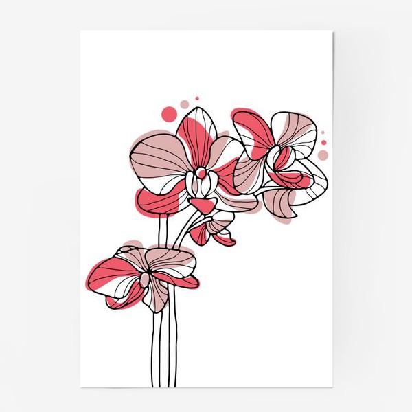 Постер «Орхидея. Букет для любимой.»