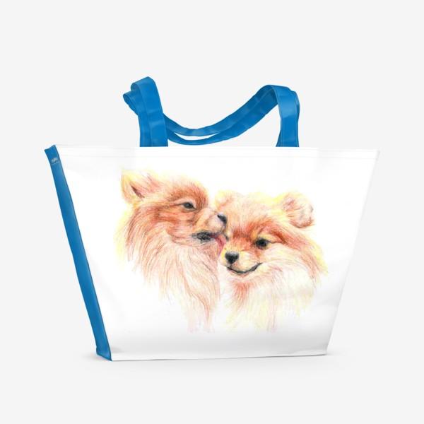 Пляжная сумка «пара собак шпицы 14 февраля любовь»