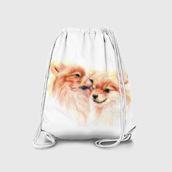 Рюкзак «пара собак шпицы 14 февраля любовь»