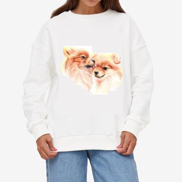 Свитшот «пара собак шпицы 14 февраля любовь»