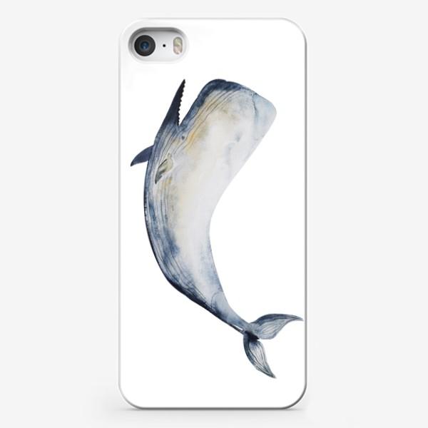 Чехол iPhone «Кит. Акварельная иллюстрация»