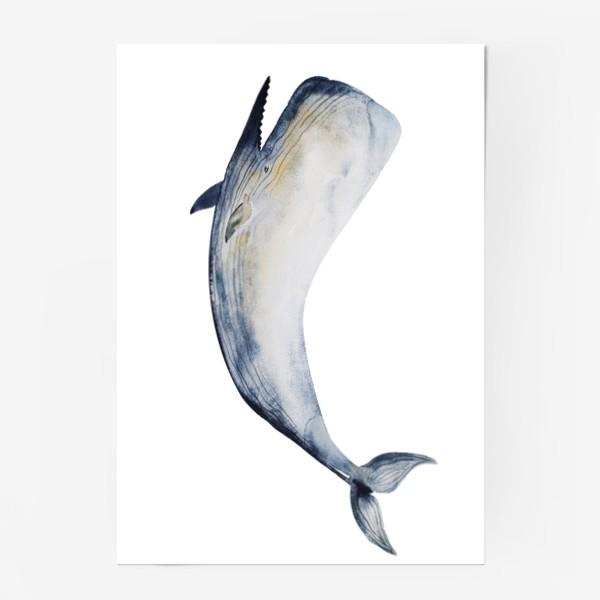 Постер «Кит. Акварельная иллюстрация»