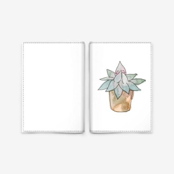 Обложка для паспорта «Суккулент»