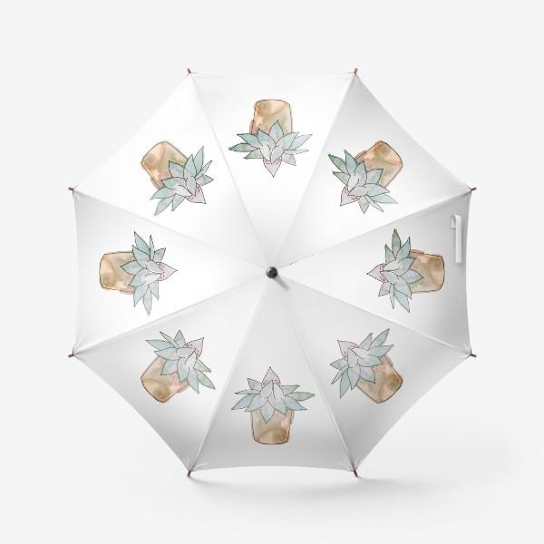 Зонт «Суккулент»