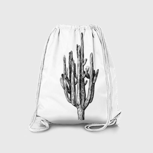 Рюкзак «Кактус»