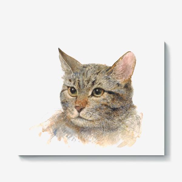 Холст «Портрет кота»