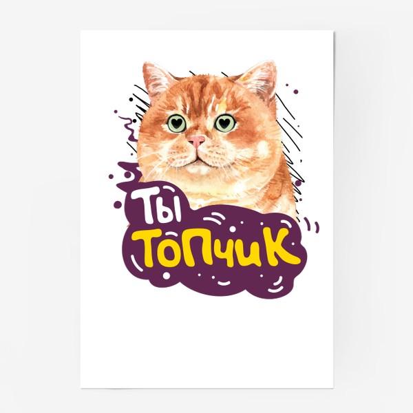 Постер «Ты не топ, Ты Топчик!»
