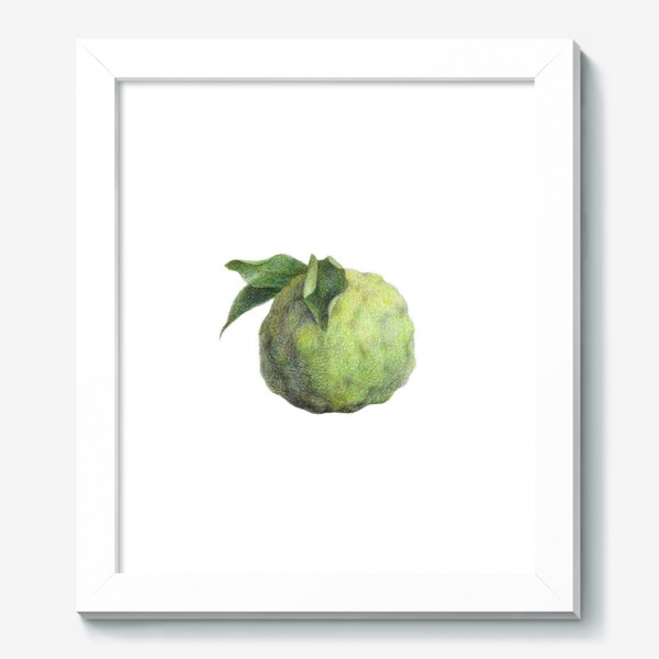 Картина «Цитрус Юзу»