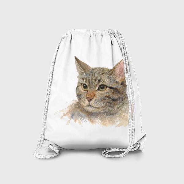 Рюкзак «Портрет кота»