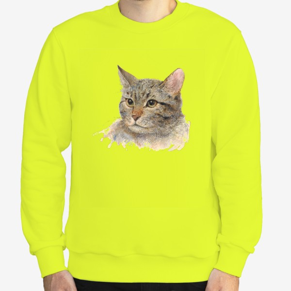 Свитшот «Портрет кота»