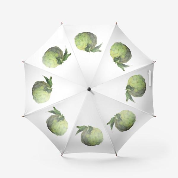 Зонт «Цитрус Юзу»