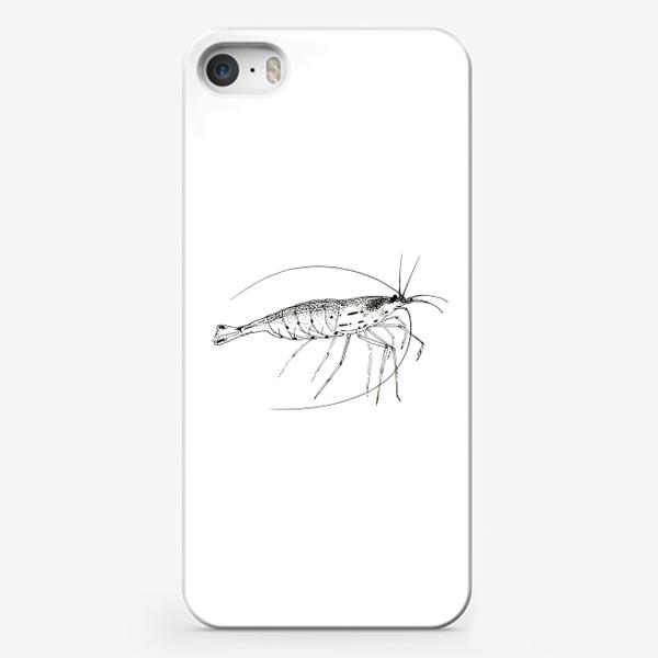 Чехол iPhone «Креветка Амано»
