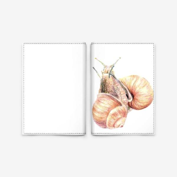 Обложка для паспорта «пара влюбленных улиток (улитка)»