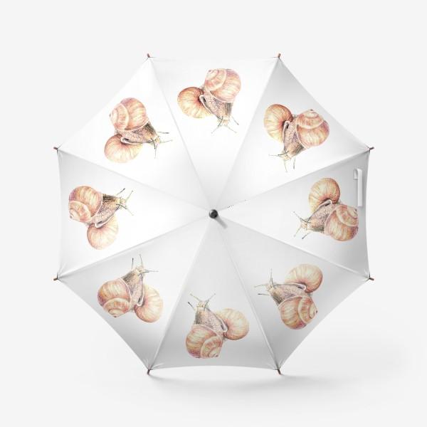 Зонт «пара влюбленных улиток (улитка)»