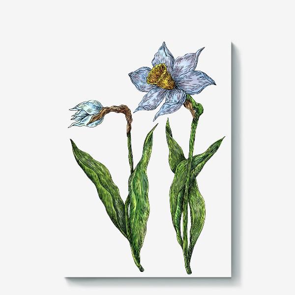 Холст «Нарциссы цветут»