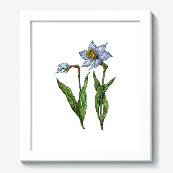 Картина «Нарциссы цветут»
