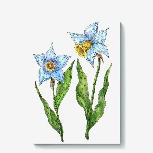 Холст «Нарциссы белые цветы»