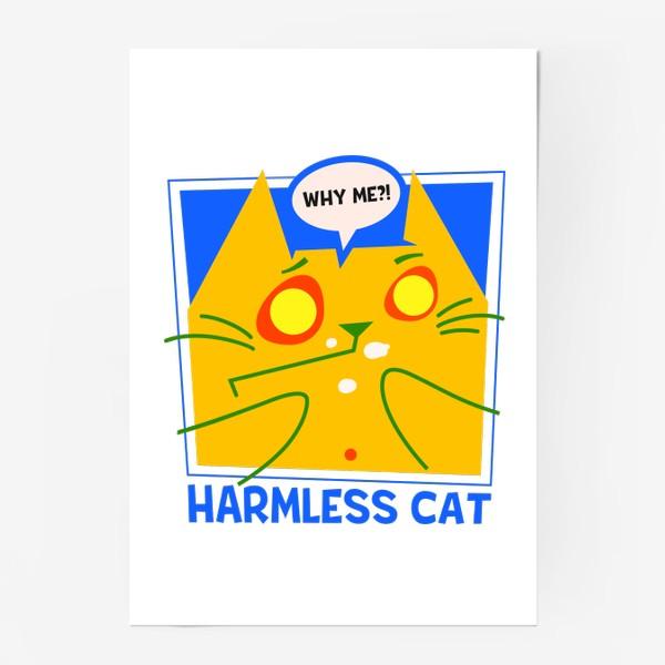 Постер «Невинный котик»