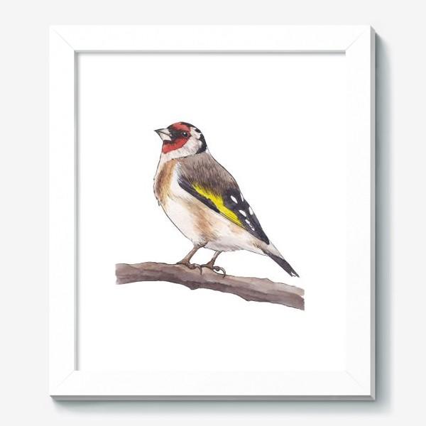 Картина «Птицы. Щегол»