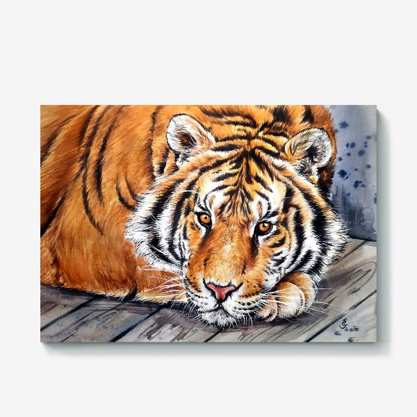 Холст «амурский тигр»