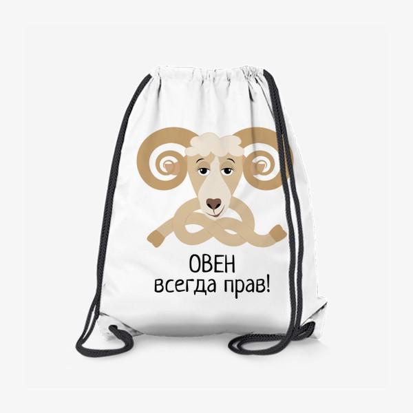 Рюкзак «Овен всегда прав»