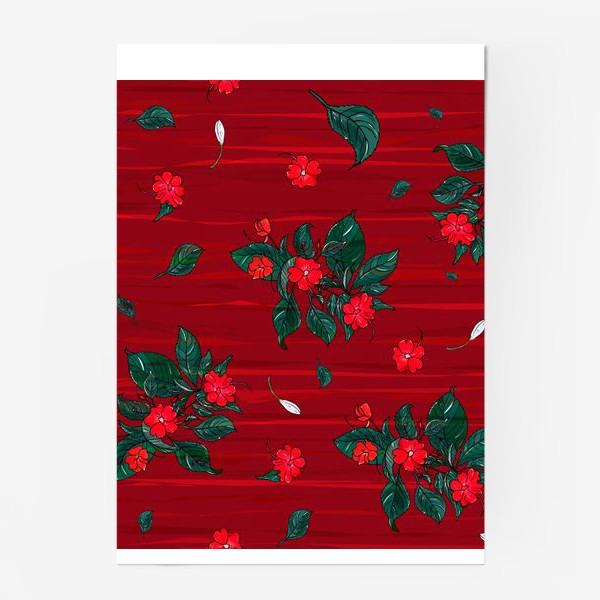 Постер «красные цветы. бальзамин»
