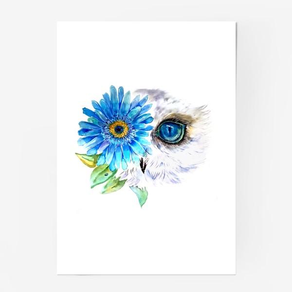 Постер «сова и цветок»