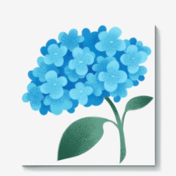Холст «Цветок плюмбаго»